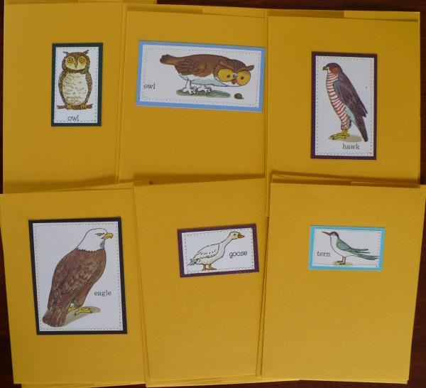 Bird cards 2