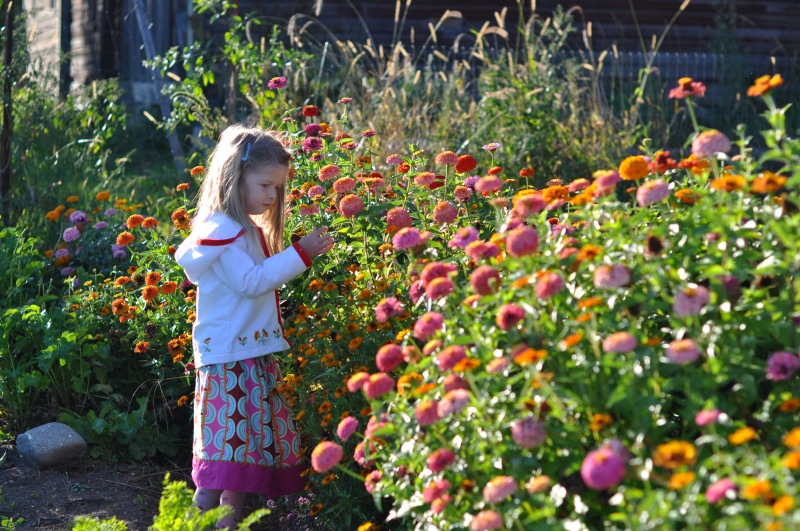 Picking the flowers