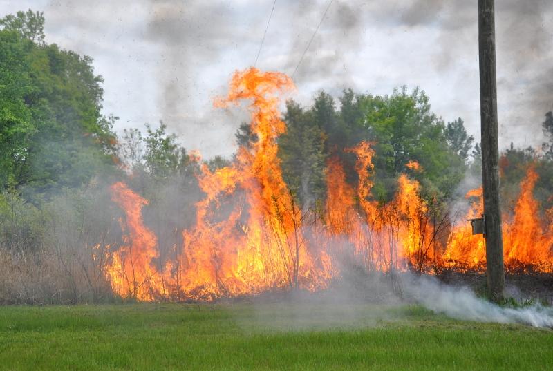 Field fire 3