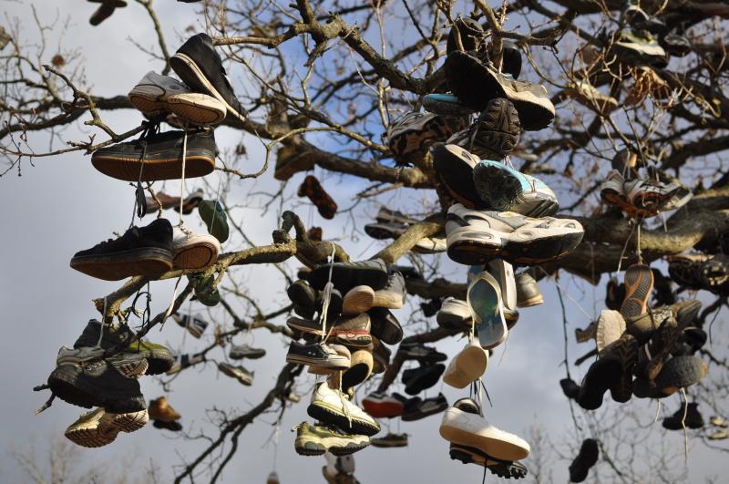 Shoe tree 4