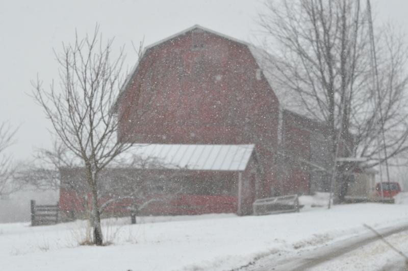 Snow and barns