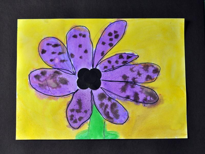 Black dot flower