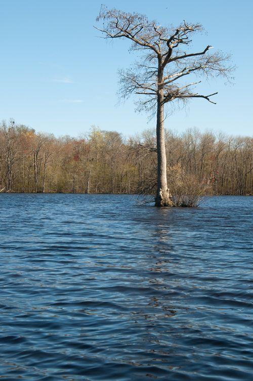 Canoe trip 9