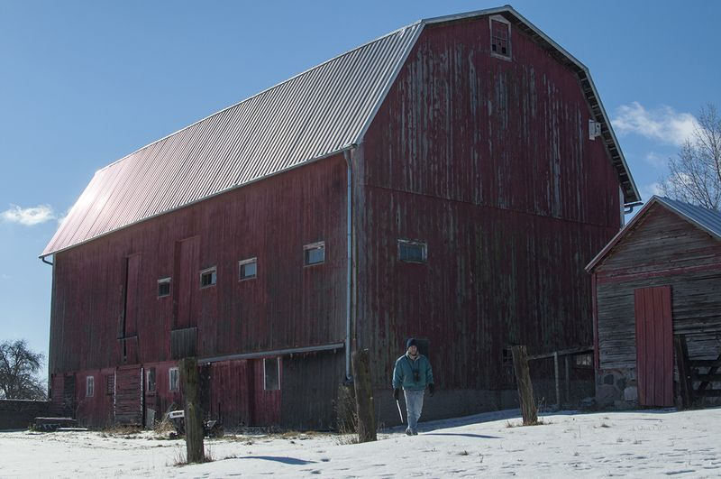 B and the barn