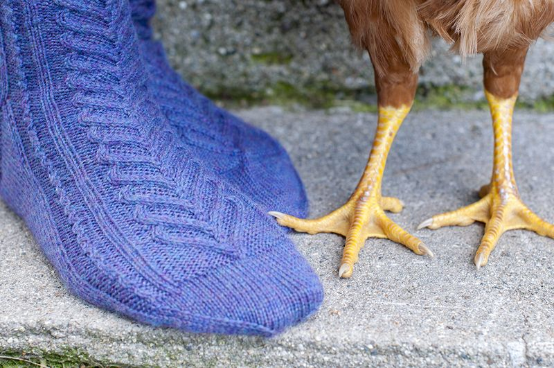 Sweetheart socks and chicken feet