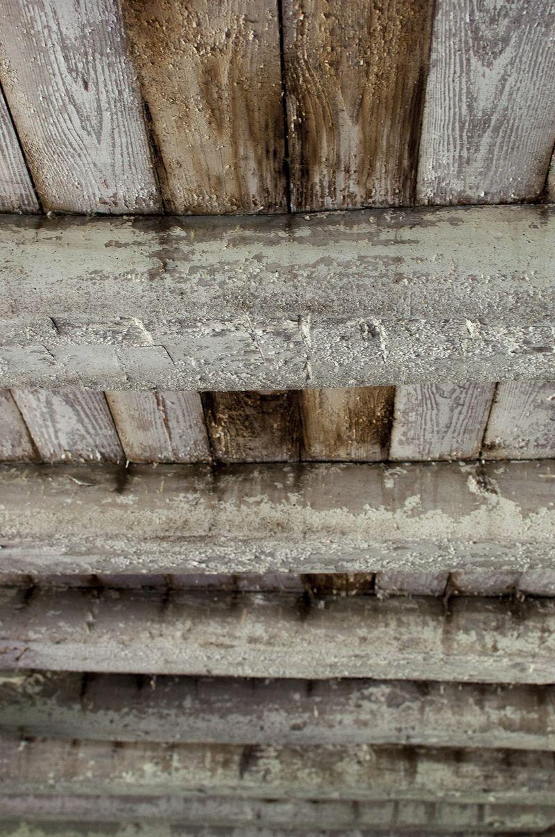 Barn basement 10