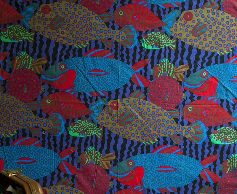 Night fish 1