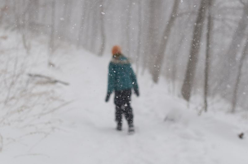 Snowy day 4