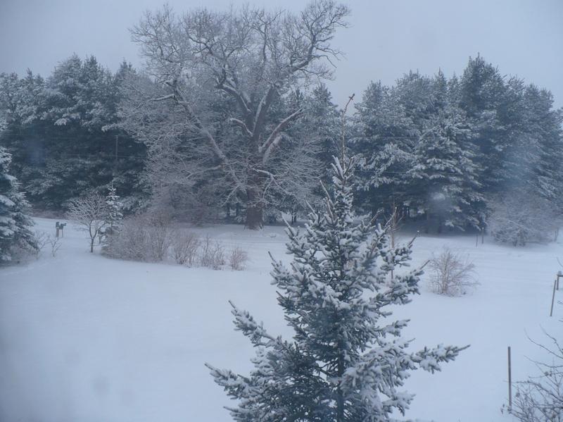 More_snow_2