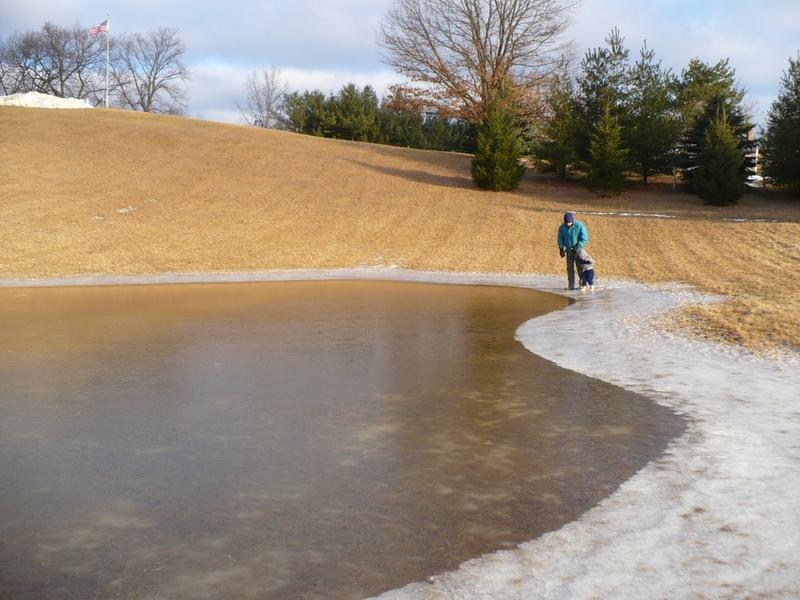 Ice_on_pond