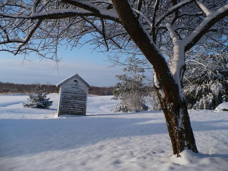 Morning_snow