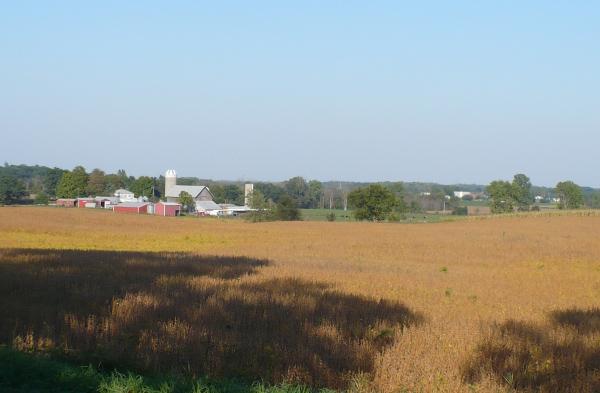 Fall_farm_2